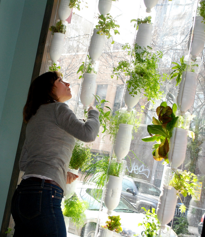 hydroponics growing food retire
